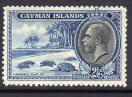 Cayman Islands GV 1935 2½d Value, Hawksbill Turtles, Hinged Mint, SG 101 - Cayman Islands