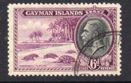 Cayman Islands GV 1935 6d Value, Hawksbill Turtles, Used, SG 103 - Cayman Islands