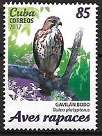 Cuba 2017 - MNH - Broad-winged Hawk (Buteo Platypterus - Eagles & Birds Of Prey
