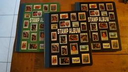 Trois Classeurs 10 Pages (18 Faces A 7 Bandes) - Albums à Bandes