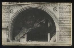 *Roma. Giardino Vaticano. Grotta Della Madonna Di Lourdes* Ed. P.E.C. Nº 223. Nueva. - Vaticano (Ciudad Del)