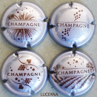 LOT N° 764 765 766 767 DE LA VIGNE AU CHAMPAGNE - Champagne