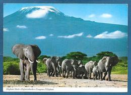 TANZANIA THE ELEPHANT 1971 - Tanzania