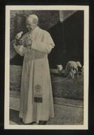 *Roma 1956. 80º Aniversario Pio XII* Foto Anónima 68 X 102 Mms. - Päpste