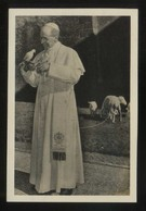 *Roma 1956. 80º Aniversario Pio XII* Foto Anónima 68 X 102 Mms. - Papas
