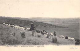 60-AUTEUIL-MOUTONS SUR LA LANDE-N°290-E/0295 - France