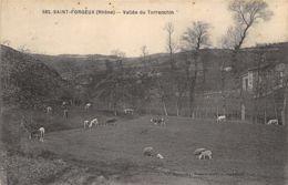 69-SAINT FORGEUX-N°292-A/0037 - Autres Communes