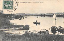 91-RIS ORANGIS-BORDS DE LA SEINE-N°296-E/0229 - Ris Orangis