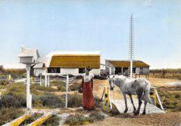 13-PANORAMA DE LA CAMARGUE-N°383-B/0081 - Autres Communes