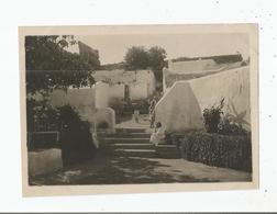 RABAT PHOTO DE L'ENTREE DU CAFE MAURE DE LA MEDERSA PAR LE QUARTIER INDIGENE DES OUDAYAS 1919 - Lieux