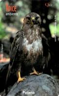 *ITALIA - VOICE* -  Scheda Usata - Eagles & Birds Of Prey