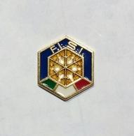 DISTINTIVO / BADGE - F.I.S.I. (Federazione Italiana Sport Invernali) PIN'S - Sport Invernali