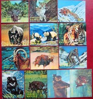 BHUTAN  1970 Wild Animals 13 V  3D Complete Set  MNH - Francobolli