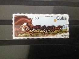 Cuba - Paarden (50) 1981 - Cuba