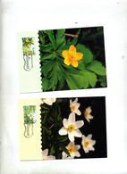 Carte Maximum 1997 Fleur - Aland