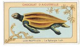 CHROMO IMAGE CHOCOLAT AIGUEBELLE LES REPTILES LE SPHARGIS LUTH - Aiguebelle