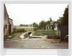 CLERMONT ..-- WALCOURT ..-- Petit Ruisseau !!! - Walcourt
