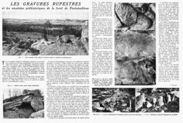 LES GRAVURES RUPESTRES Et Les ENCEINTES De La FORET DE FONTAINEBLEAU  ( SEINE Et MARNE )  1948 - Ile-de-France