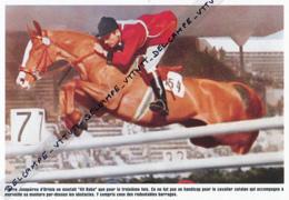 "EQUITATION : PHOTO (1952), JEUX OLYMPIQUES, HELSINKI, PIERRE JONQUIERES D'ORIOLA SUR ""ALI BABA"", MEDAILLE D'OR - Equitation"