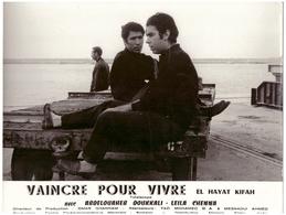 Cinéma Photo De Film Marocain : Vaincre Pour Vivre. Format 280/220 Mm - Reproductions