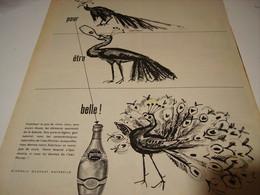 ANCIENNE PUBLICITE POUR ETRE BELLE PERRIER  1956 - Posters