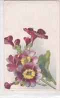 RAMO DE FLORES FLEURES FLOWERS BOUQUET. DETAILS EN DORE, EN RELIF. CIRCA 1900s UNCIRCULATED- BLEUP - Bloemen
