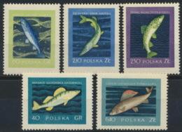 Polen 1051/55 ** Postfrisch - Ungebraucht
