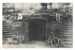FAYL - BILLOT  (cpa 52)  Grotte Du Bois-banal   -   L 1 - Fayl-Billot