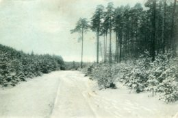 SWITZERLAND - Untitled Snow Scene - VG Olten And Ayr (UK) Postmarks 1906 - SO Solothurn