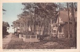 ¤¤  -   QUIMIAC   -  Bois De Lanséria  -  Une Avenue Et Villa Dans Les Pins   -   ¤¤ - Mesquer Quimiac
