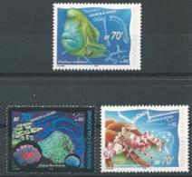 Nouvelle-Calédonie 2000 - Aquarium De Nouméa - New Caledonia