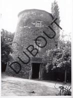Belgrade Molen/Moulin Originele Foto A.Carre  C34 - Andenne