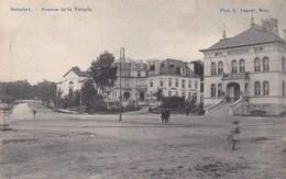 Boitsfort Avenue De La Venerie - Watermael-Boitsfort - Watermaal-Bosvoorde