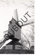 Heist Op Den Berg  Molen/Moulin Originele Foto C25 - Heist-op-den-Berg