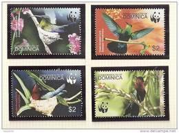 Dominica Dominique 3129/32 Colibri Wwf - Hummingbirds