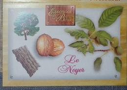 Petit Calendrier De Poche 2003  Illustration Essences Et Bois Arbre  Le Noyer - Noix - Kleinformat : 2001-...