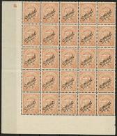 1919 Bloc à 25 Timbres 7 1/2c Orange, Surcharge Officiel (visible 2 Cotés), Neuf Sans Charnière: Michel 108 (2scans) - Luxembourg