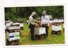 CHEZELLES  --Domaine Apicole De Chezelles --Récolte Du Miel (animée)--abeille --Photo  10 X 15 - Otros Municipios