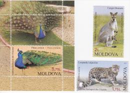 Moldova , Moldavie , Moldau , 2013 , Chisinau , Zoo , Animals , Birds , 2v + S/s ,   MNH - Moldova