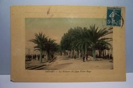 SANARY -SUR-MER  -  Les Palmiers Du Quai  Victor Hugo - Sanary-sur-Mer
