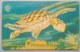 19CBVC Turtle $10 - Virgin Islands