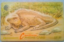 22CBVC Iguana $5 - Vierges (îles)
