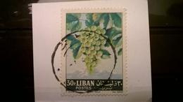 FRANCOBOLLI STAMPS LIBANO LIBAN 1962 SERIE FRUITS FRUTTAI SU FRAMMENTO FRANGMENT - Libano