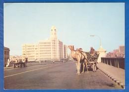 Pakistan; Karachi; Karaci; Camel - Cart - Pakistan