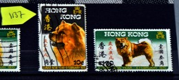 1137 China Hong Kong Cv€21 - Hong Kong (...-1997)