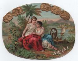 Chromo/Image D'intérieur De Boite De Cigares/ Chromo Gauffré/ Habana/ /Moyen Format/ Vers 1890-1900    CHRO91 - Cigarette Cards