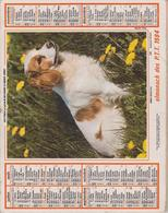 CALENDRIER PTT 1984 - Calendriers