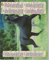 CALENDRIER PTT 1988 (   CHIEN Et CHEVAL ) - Calendriers