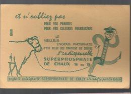 Buvard SUPERPHOSPHATE DE CHAUX  (PPP8624A) - Agriculture