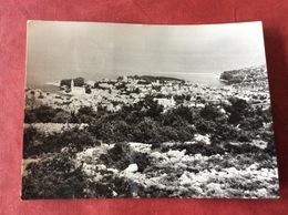 Joegoslavië Jugoslavija. Veli Losinj. Panorama 1966 - Yougoslavie